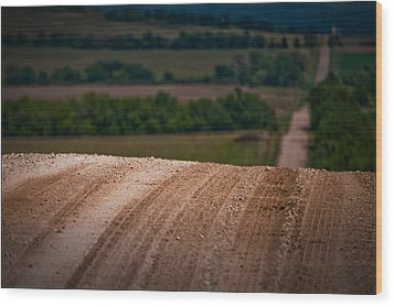 Wood Print featuring the photograph Tread On Me by Brian Duram