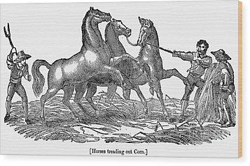 Treading Corn, 1833 Wood Print by Granger