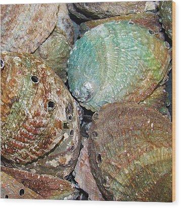 Treasures Vii Wood Print by Christine  Fifer
