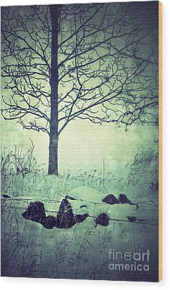 Tree And Fence In The Fog And Snow Wood Print by Jill Battaglia