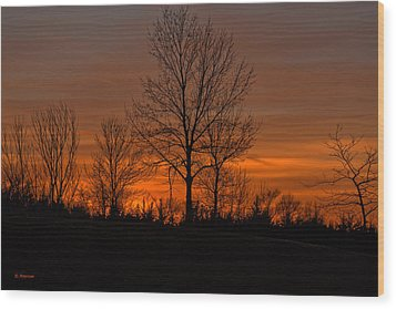 Wood Print featuring the photograph Tree At Sunset by Edward Peterson