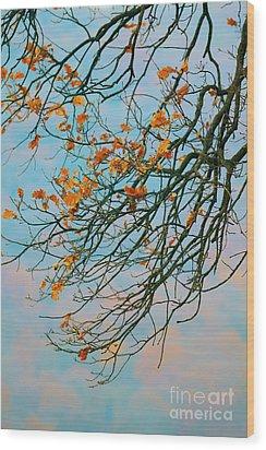 Tree Branches In Autumn Wood Print by Gabriela Insuratelu