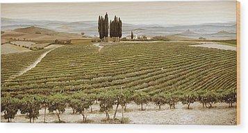 Tree Circle - Tuscany  Wood Print by Trevor Neal