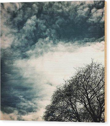 Tree Crown Wood Print by Joana Kruse