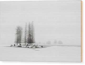 Tree In Snow Wood Print by Yagosan