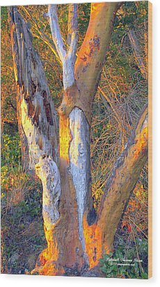 Tree In The Sunset Wood Print by Randall Thomas Stone