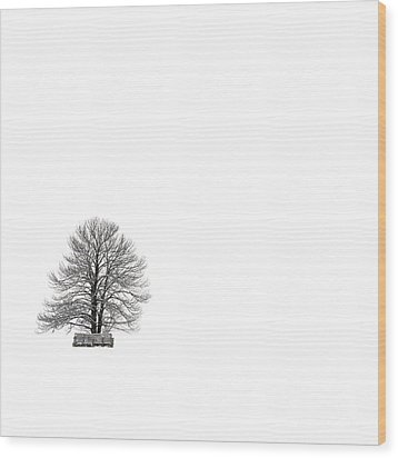 Tree Isolated Under The Snow In The Middle Field In Winter. Wood Print by Bernard Jaubert