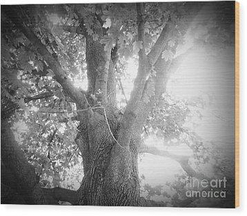 Tree Wood Print by Jeremy Wells