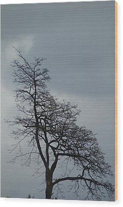Wood Print featuring the photograph Tree by Jerry Cahill
