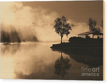 Tree Midst The Fog- Sepia Wood Print by Gina Collins