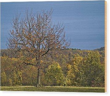 Tree Wood Print by Odon Czintos