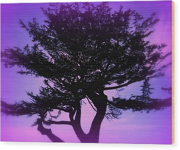 Tree Of Glory Wood Print by Cindy Wright