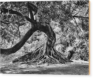 Tree Of Life - Bw Wood Print by Kenneth Mucke