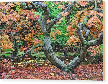 Tree Of Life Wood Print by Sarai Rachel