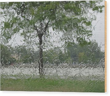 Tree Of Life Stands In A Storm Wood Print by Judy Via-Wolff