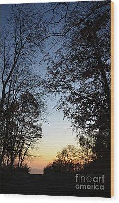 Tree Silhouette At Sunset 1 Wood Print by Bruno Santoro