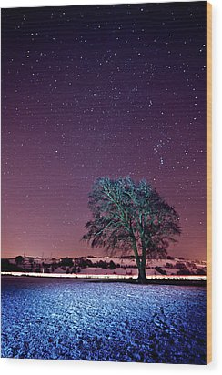 Tree Snow And Stars Wood Print by Paul McGee
