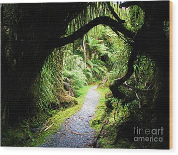 Wood Print featuring the photograph Tree Tunnel by Michele Penner