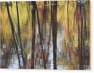 Trees And Fall Foliage Reflected Wood Print by Medford Taylor