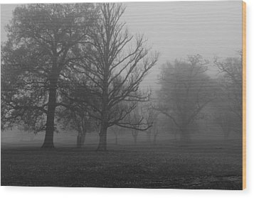 Wood Print featuring the photograph Trees And Fog by Maj Seda
