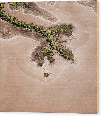 Trees And Mudflats Wood Print by Judi Mowlem
