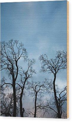 Trees. Autumn. Wood Print by Konstantin Dikovsky