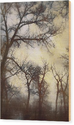 Trees  Wood Print by Diane Dugas