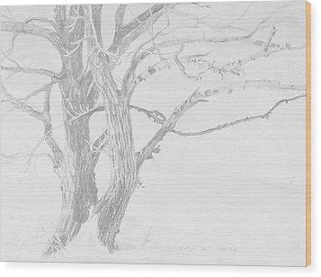 Trees In A Snow Storm Wood Print by David Bratzel