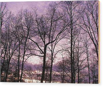 Wood Print featuring the photograph Trees In Glorious Calm by Pamela Hyde Wilson