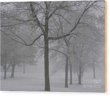 Trees In The Winter Wood Print by Yumi Johnson