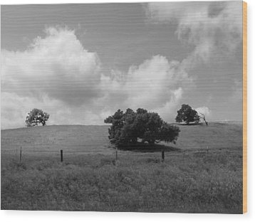 Wood Print featuring the photograph Trees On The Hillrise by Kathleen Grace