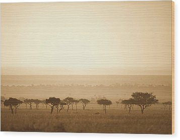 Trees On The Savannah At Sunset Masai Wood Print by David DuChemin