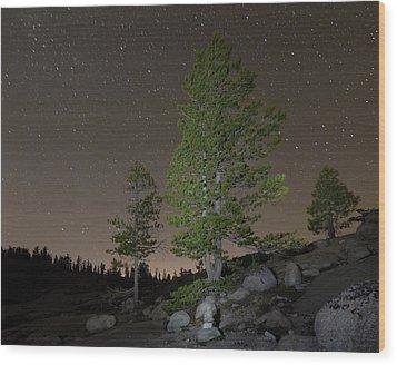 Trees Under Stars Wood Print by Sean Duan