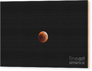 Tribute To Neil Armstrong Wood Print by Venura Herath