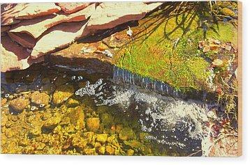 Trickle Waterfall Wood Print by Usha Shantharam