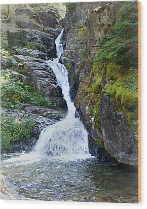 Tricky Falls Wood Print by Marty Koch