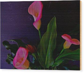 Triplets Of Calla Lilies Wood Print by Randy Rosenberger