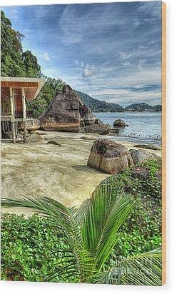 Tropical Beach Wood Print by Adrian Evans