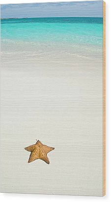 Tropical Beach And Starfish Wood Print by Mehmed Zelkovic