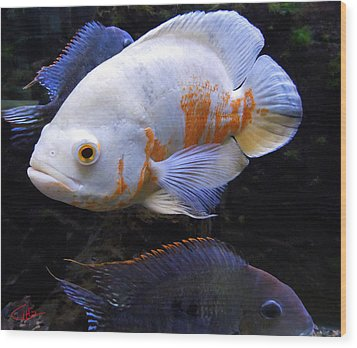 Tropical Fish  Wood Print by Colette V Hera  Guggenheim