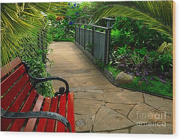 Tropical Garden Pathway Wood Print by Elaine Manley