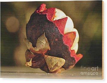 Tropical Mangosteen - The Medicinal Fruit Wood Print by Kaye Menner