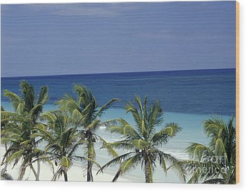 Wood Print featuring the photograph Tropical Paradise Sian Kaan Mexico by John  Mitchell