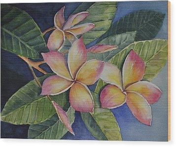 Tropical Plumerias Wood Print by Sandy Fisher