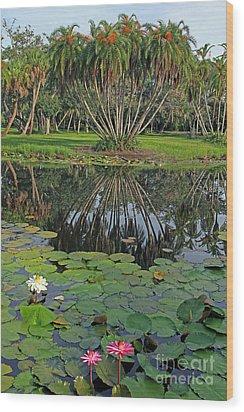 Tropical Splendor Wood Print by Larry Nieland