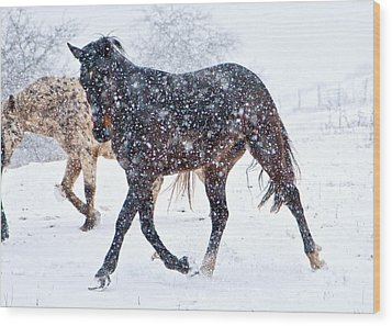 Trotting In The Snow Wood Print by Betsy Knapp