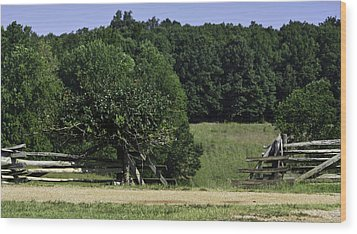 Trumpet Vine And Fence At Appomattox Courthouse Virginia Wood Print by Teresa Mucha