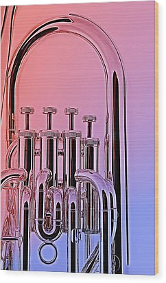Tuba Euphonium Valves Isolated Wood Print by M K  Miller