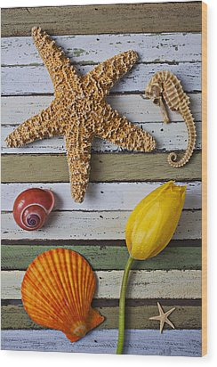 Tulip And Starfish Wood Print by Garry Gay