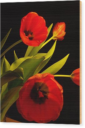 Wood Print featuring the photograph Tulip Arrangement 1 by Peter Mooyman